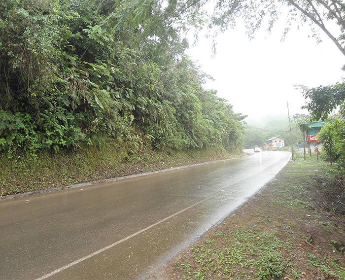 Carretera Puente Chino - Aguaytía, sectores dañados